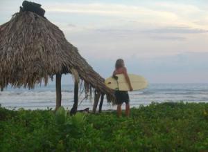 Surfs Always Up